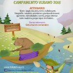 Campamento de Verano.
